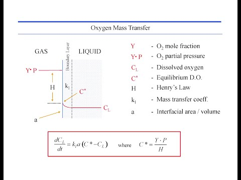 Gas liquid interface mass transfer - bioreactor design